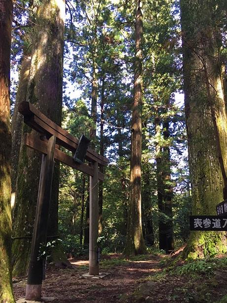 杉原神社鳥居