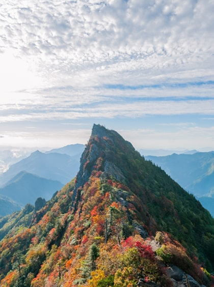 石鎚神社は石鎚山登山できなくても御神氣に浸れる素敵空間だった話 ...