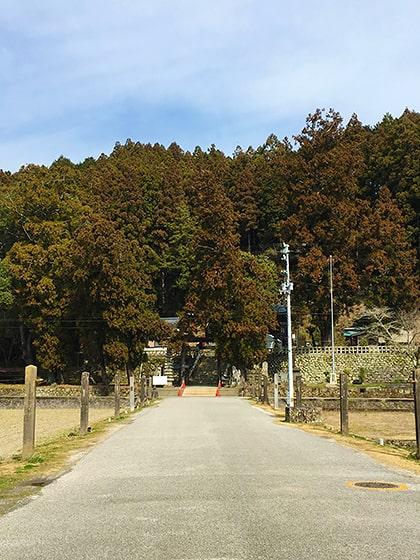 須崎市賀茂神社の参道